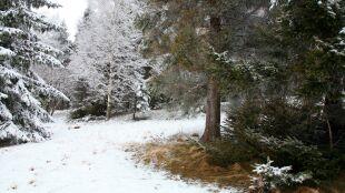 Pogoda na pięć dni: intensywny deszcz, a w górach sporo śniegu
