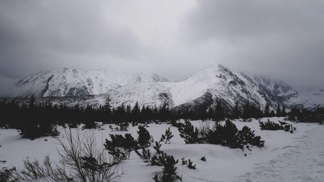 W Tatrach lawiny schodzą samoczynnie, jedna porwała turystę. W Bieszczadach wichury